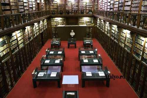 библиотека как развивающая среда нового поколения: библиотечные юниор чтения 2012